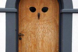 Baykuş Kapı