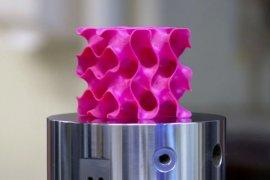 Grafen'in 3B yazıcıda plastikten üretilmiş bir maketi